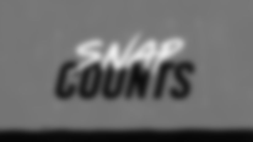 Snap Counts: Panthers vs. Falcons