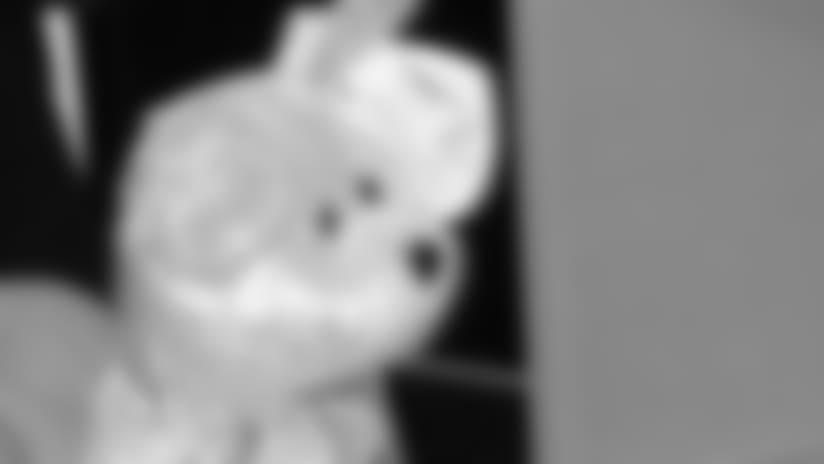 beanie-baby-20160331.jpg
