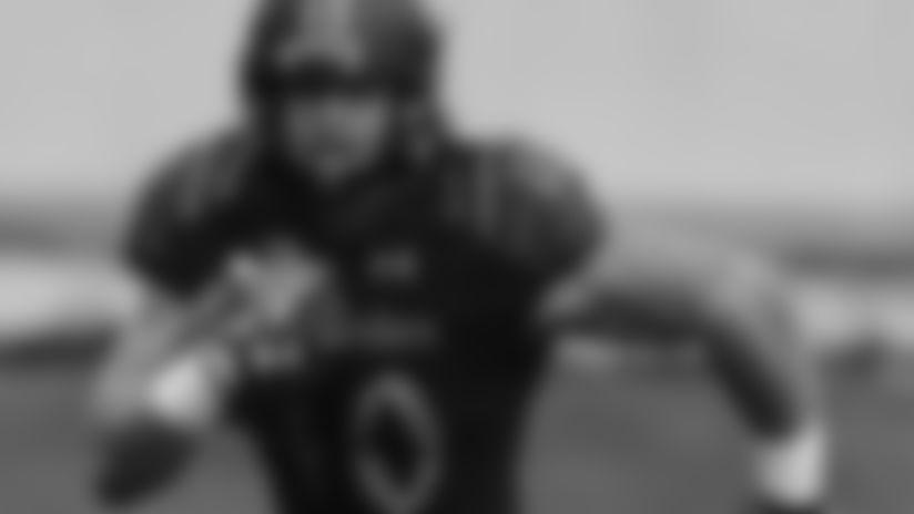 2016 Draft Prospects: Dan Vitale, FB, Northwestern