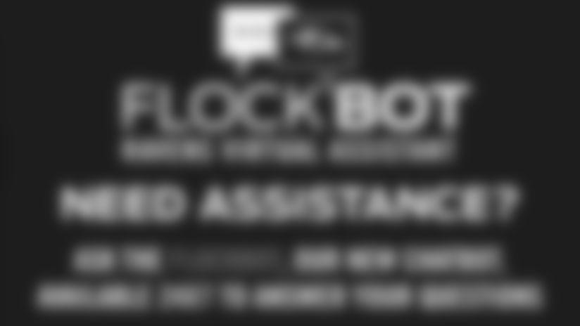 111519_Flockbot