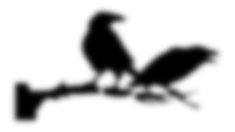 Ravens Pumpkin Carving Stencil: Ravens on a limb