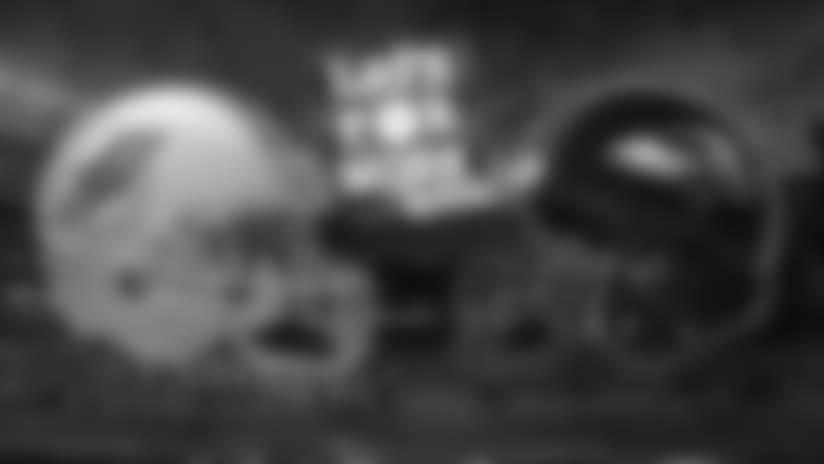 26_LFW_RavensDolphins_news.jpg