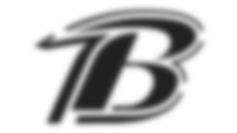 Ravens Pumpkin Carving Stencil: B logo