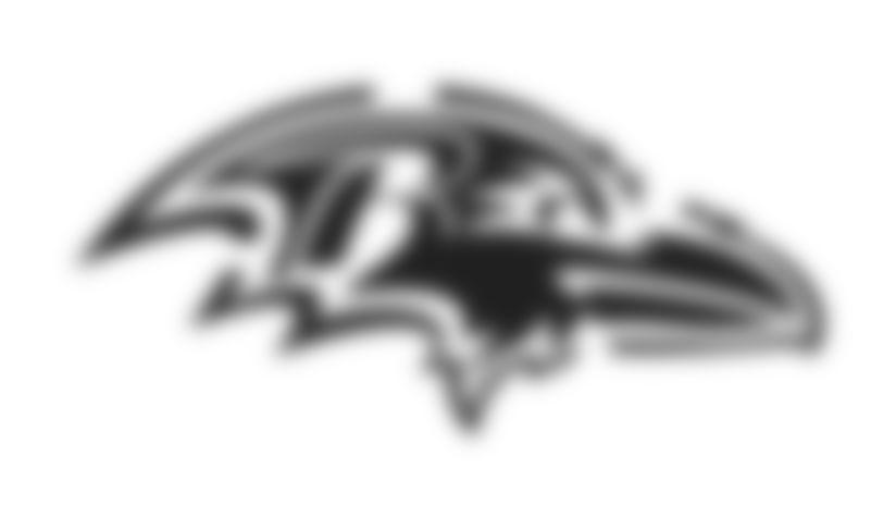 Ravens Pumpkin Carving Stencil: Ravens primary logo