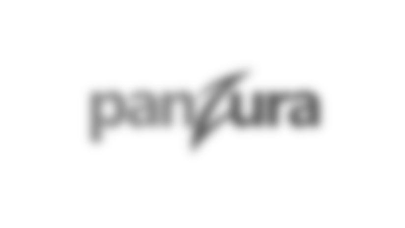 Official Partner - Panzura
