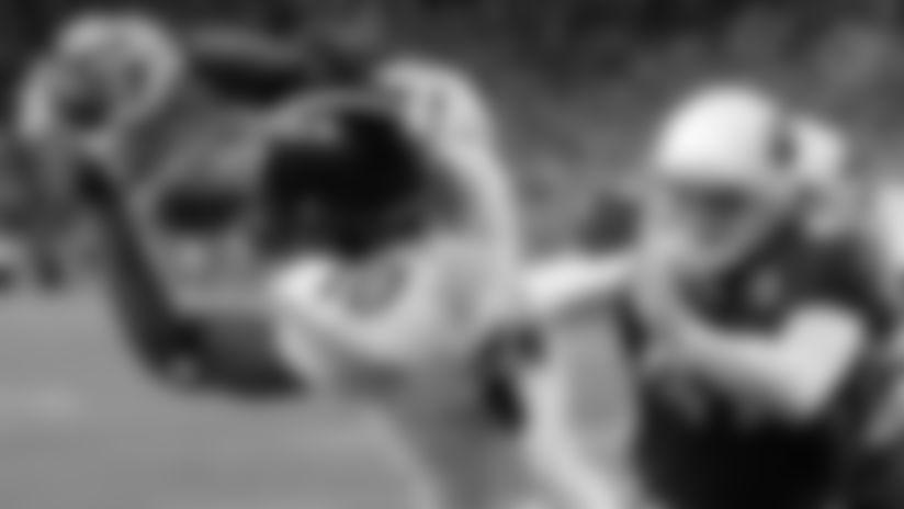 Steelers WR Santonio Holmes hauling in a game-winning, 4th quarter touchdown vs. the Arizona Cardinals in Super Bowl XLIII