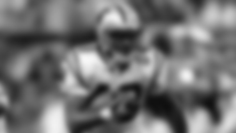 **RB Stephen Davis (2003-2005)**  Davis came to Carolina during the latter half of his career, but his first year with the Panthers resulted in his most productive year ever, totaling 1,444 rushing yards and eight touchdowns en route to an appearance in Super Bowl 38. Nagging knee injuries hampered Davis' final two years in Carolina, but the 2003 season will always remain a part of Panthers history.