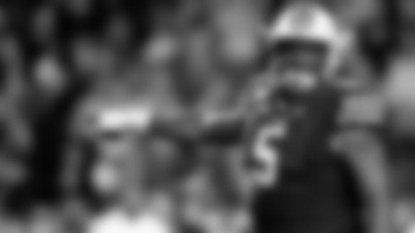 Vikings Draft Prospects: Defensive Tackles