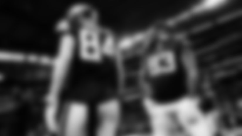 Minnesota in Monochrome: Vikings-Lions