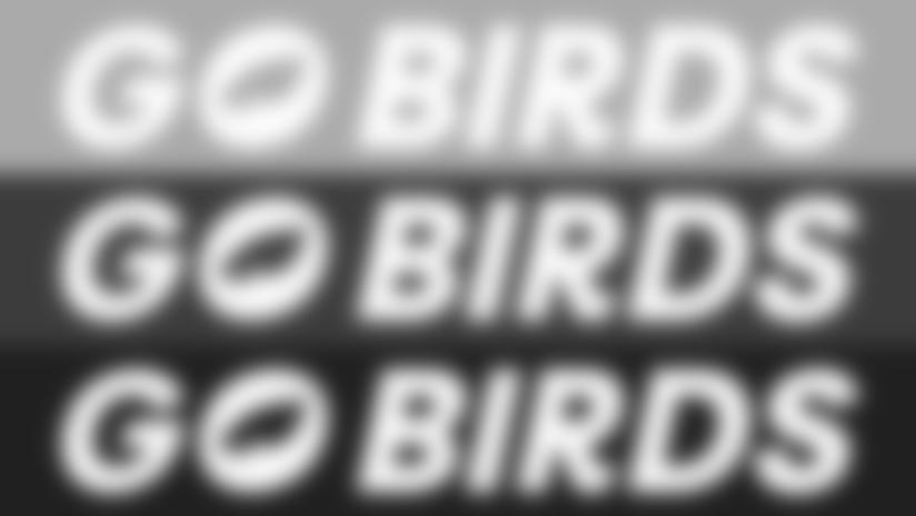 1920x1080-GoBirds-Zoom-Background-r1