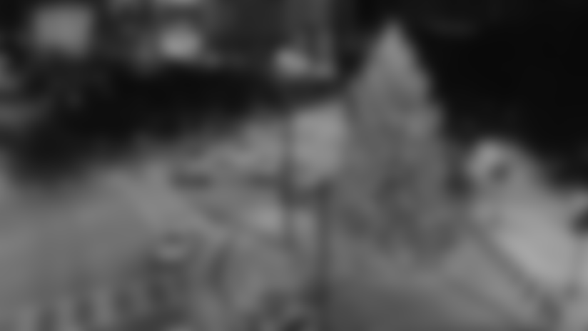 Screen Shot 2020-12-01 at 8.17.48 PM