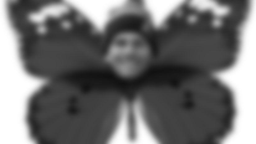 awards_butterfly.png