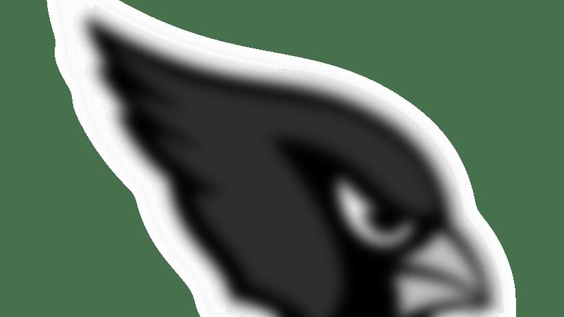 Week 11 - Arizona Cardinals