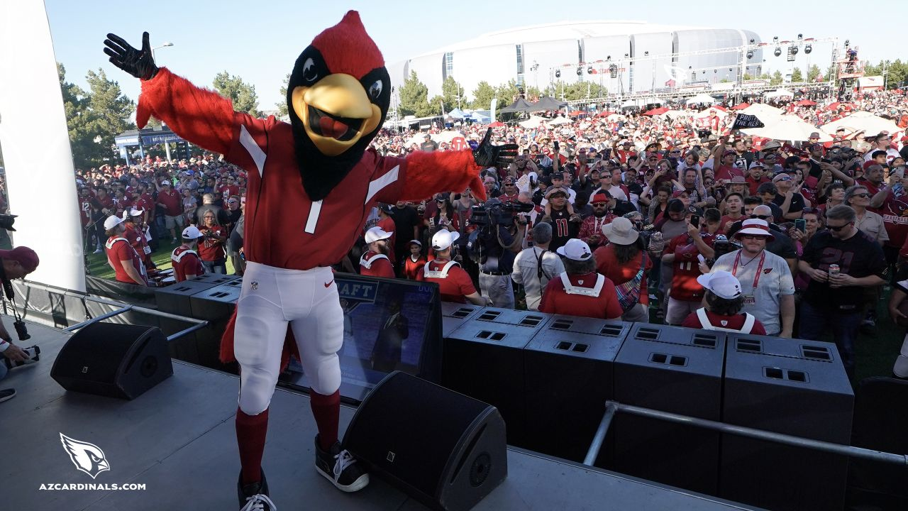 Images from the Cardinals' draft party on the Great Lawn outside State Farm Stadium last Thursday