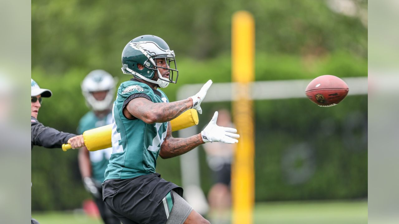 WR Mike Wallace