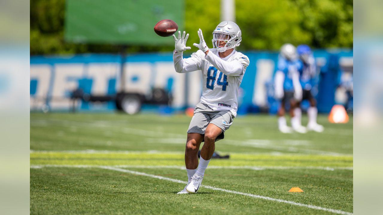 Detroit Lions wide receiver Travis Fulgham (84) during Day 5 of OTAs on Thursday, May 30, 2019 in Allen Park, Mich. (Detroit Lions via AP)