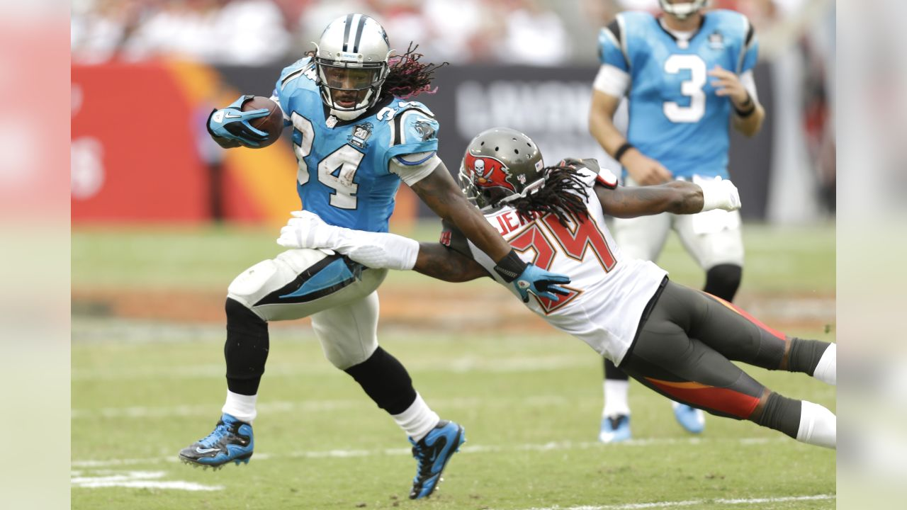 Carolina Panthers DeAngelo Williams runs with the football during the game against the Tampa Bay Buccaneers at the Raymond James Stadium in Tampa Bay, Fla., Sunday, Sept. 7, 2014. (Mike McGinnis/AP Images for Panini)