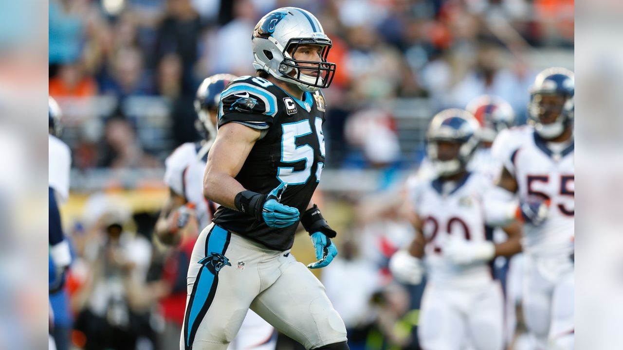 Best of the Panthers in 2015 season