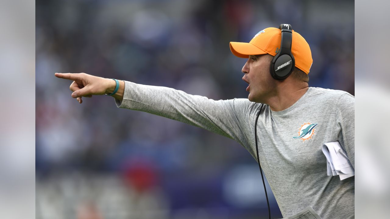 CORRECTS ID TO SPECIAL TEAMS COACH DARREN RIZZI NOT ADAM GASE Miami Dolphins special teams coach Darren Rizzi points in the second half of an NFL football game against the Baltimore Ravens, Sunday, Dec. 4, 2016, in Baltimore. (AP Photo/Gail Burton)