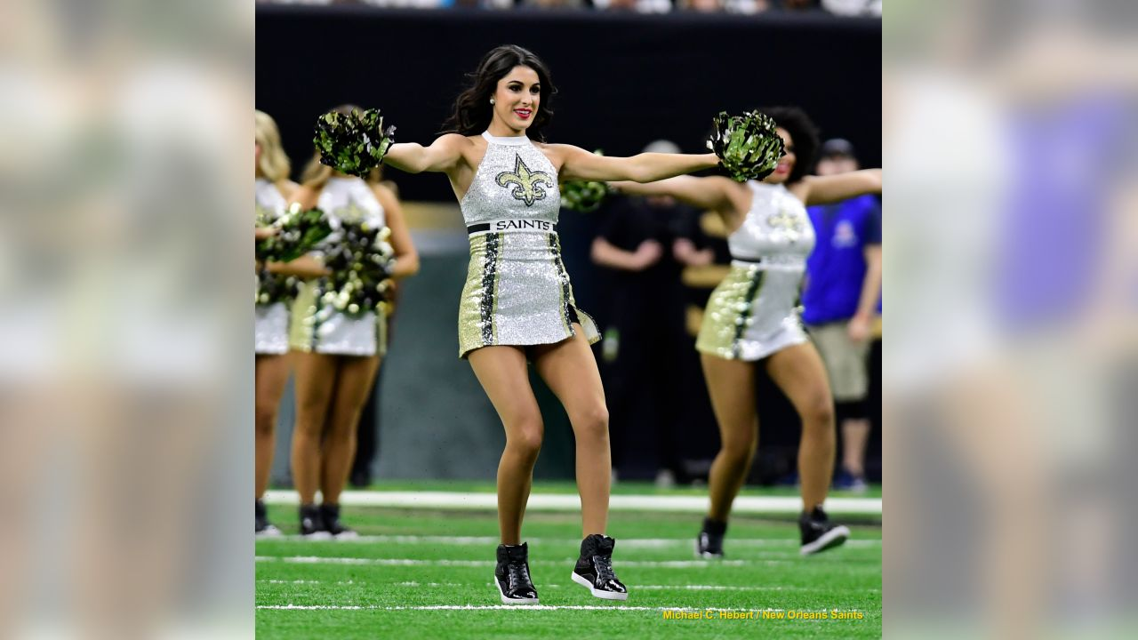 Panthers 33 - Saints 14 (L)13-3 for the 2018 SeasonNumber 1 Seed in the NFCNew Orleans Saints 2018 SeasonMichael C.  Hebert