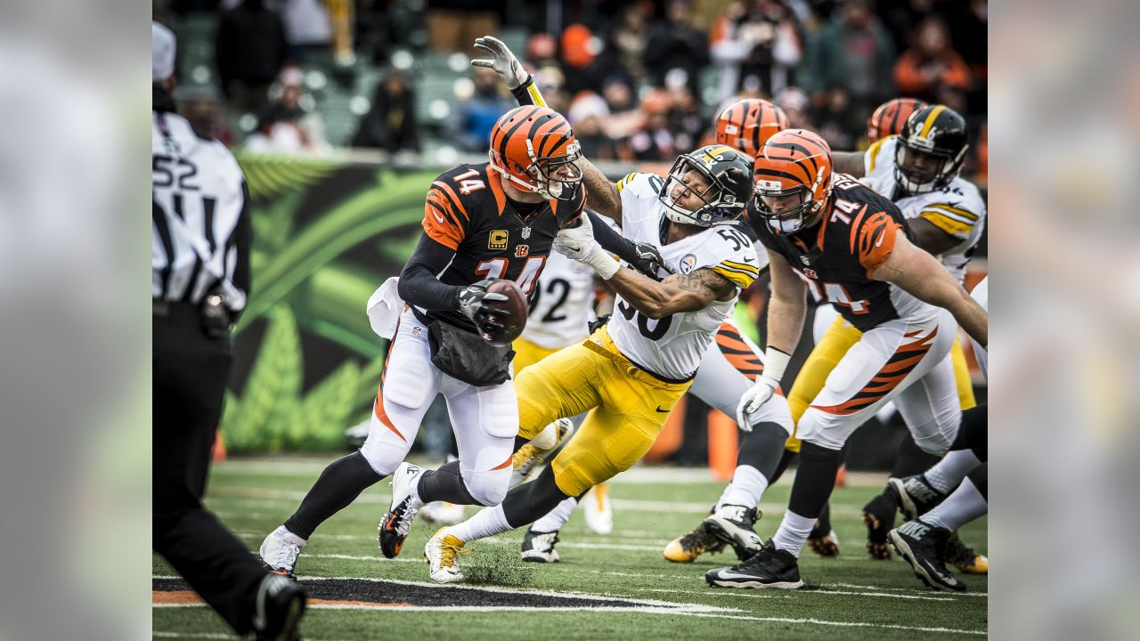 A Regular Season game between the Pittsburgh Steelers and the Cincinnati Bengals on Sunday December 18th 2016. The Steelers defeated the Bengals 24-20.