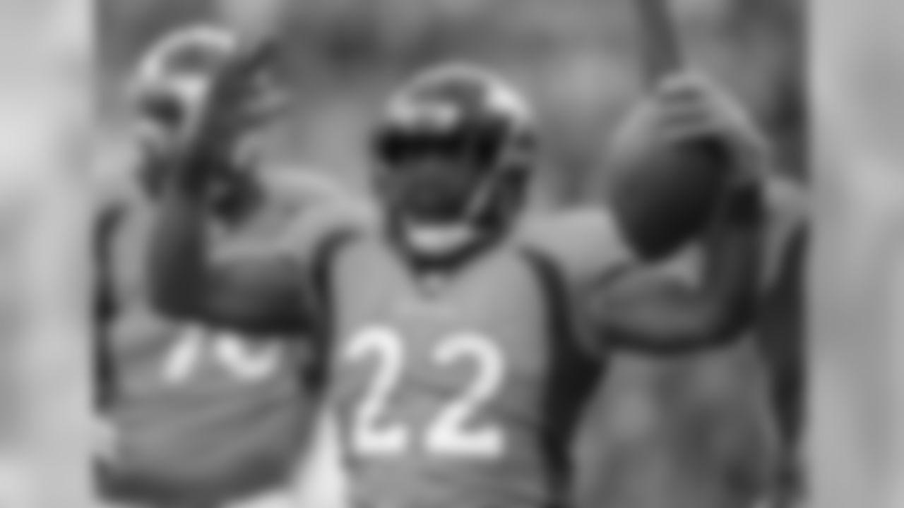 Running back C.J. Anderson (22)