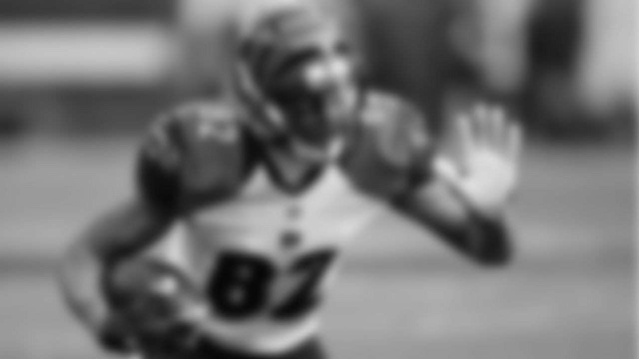 1. Marvin Jones, Bengals