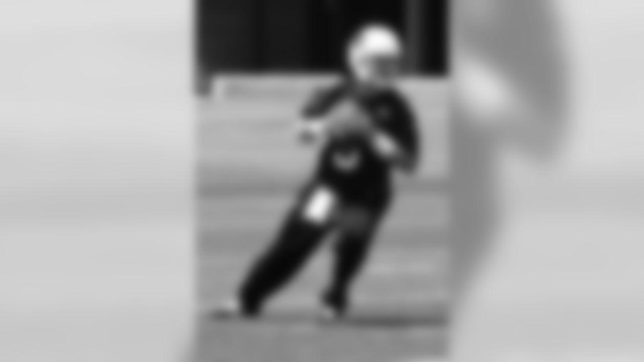 Carson Palmer drops back to throw