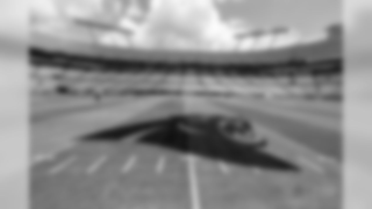 The Carolina Panthers logo is shown at mid-field before an NFL football game between the Carolina Panthers and the Dallas Cowboys in Charlotte, N.C., Sunday, Sept. 9, 2018. (AP Photo/Jason E. Miczek)