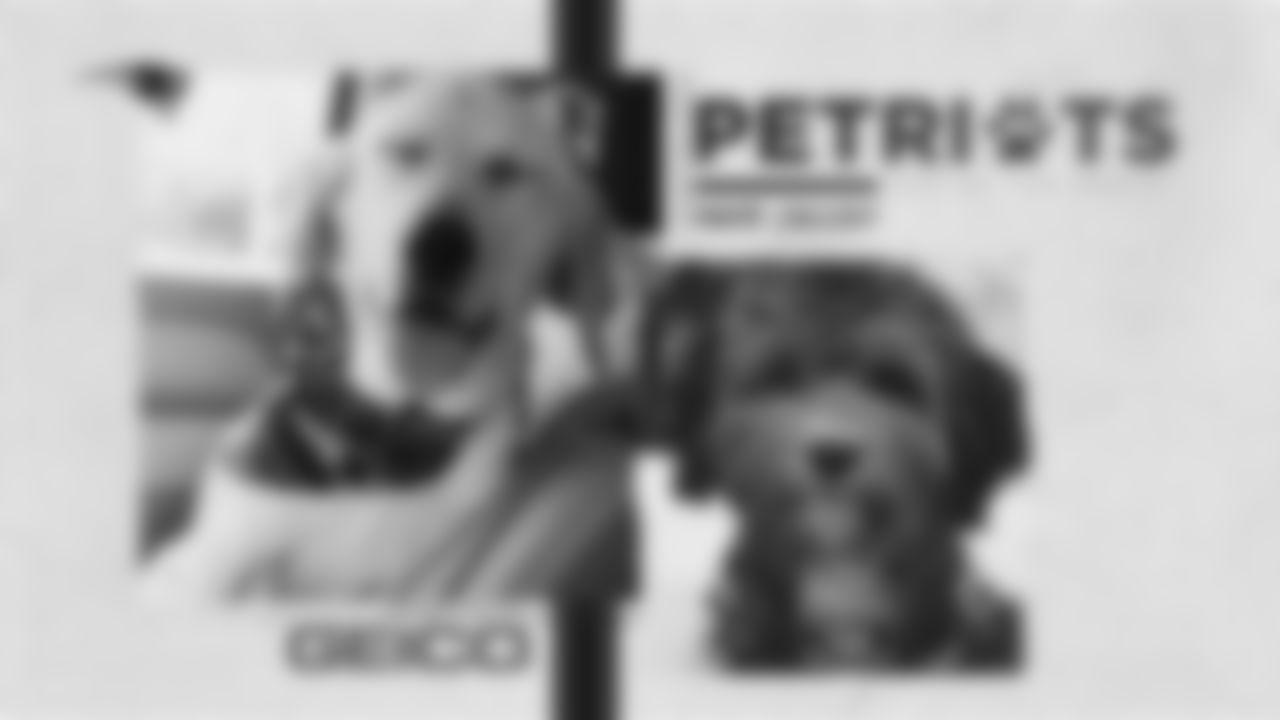 PETRIOT PDC