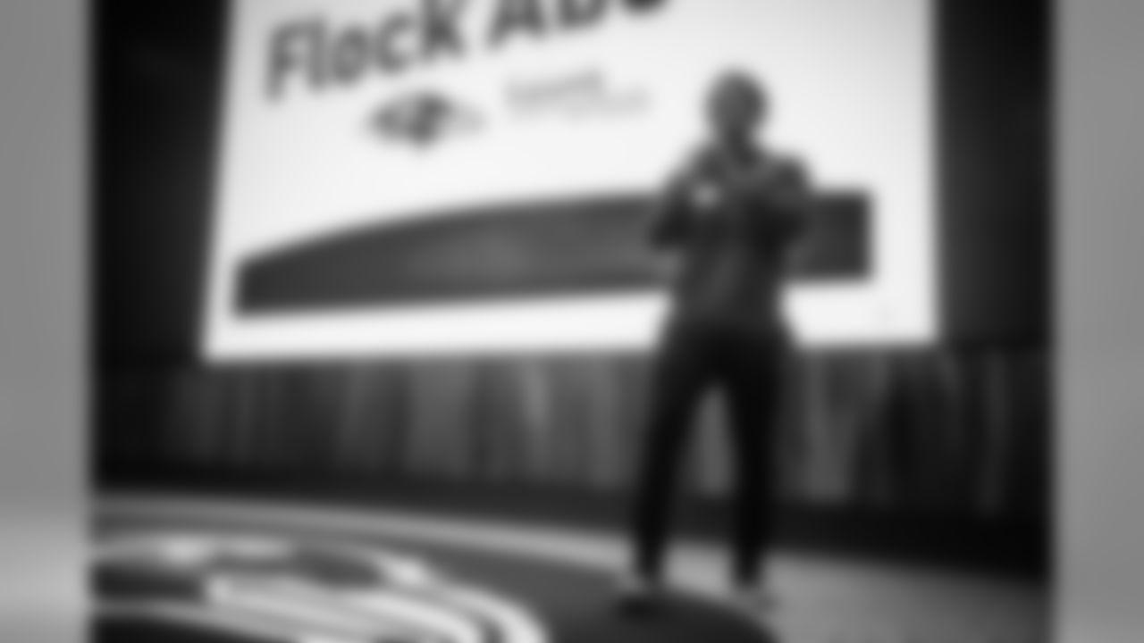 FlockAbovejp0036WEB