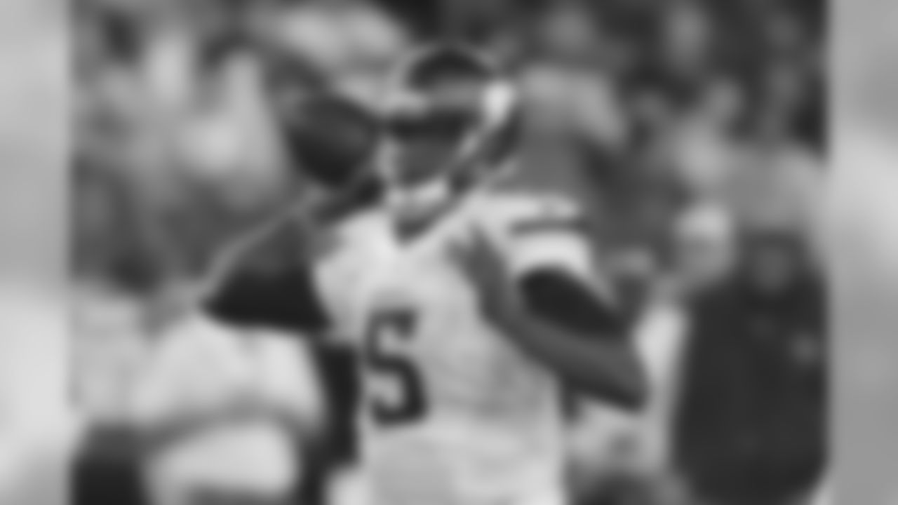 No. 1 Teddy Bridgewater, 2014   2,919 Passing Yards, Season