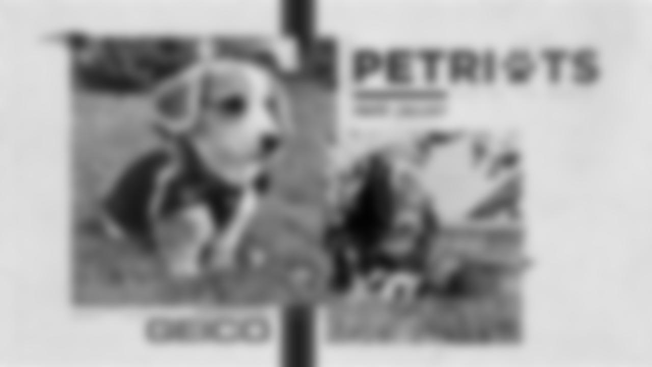 September-2020-PetriotsGallery-PDC