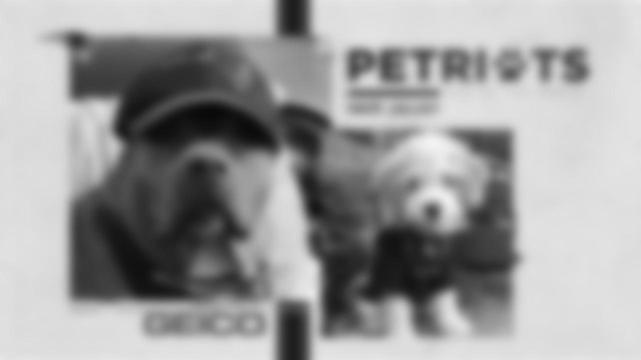 2020-PetriotsGallery-PDC