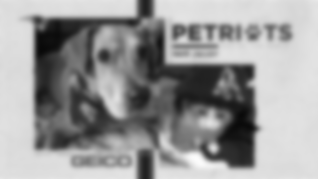 August-2020-PetriotsGallery-PDC