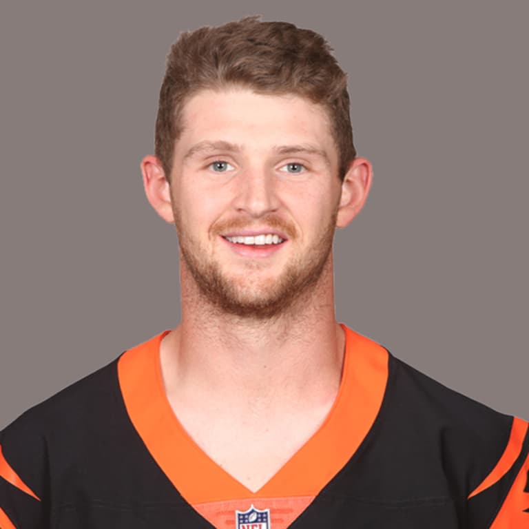 Image result for jeff driskel