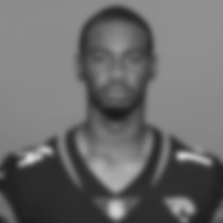 This is a 2020 photo of Terry Godwin of the Jacksonville Jaguars NFL football team. This image reflects the Jaguars active roster as of August 23, 2020 when this image was taken. (AP Photo)