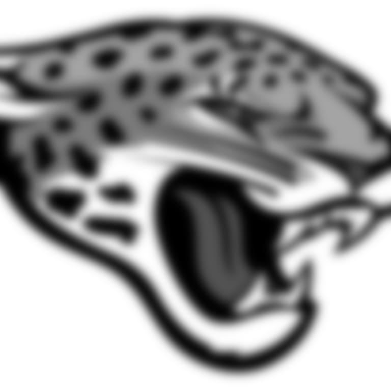 Headshot picture of Jaguars Public Relations