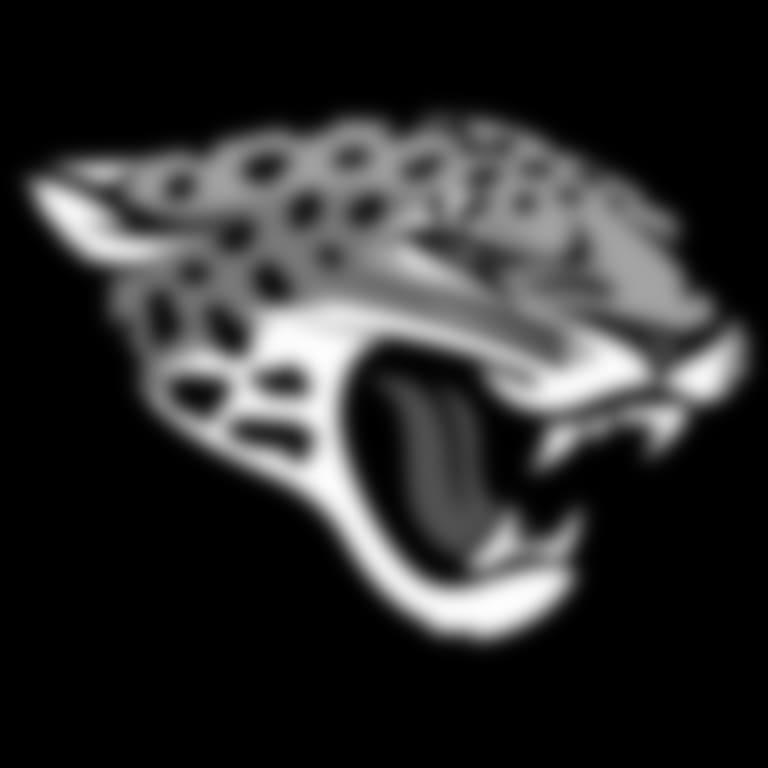 Headshot picture of Jacksonville Jaguars