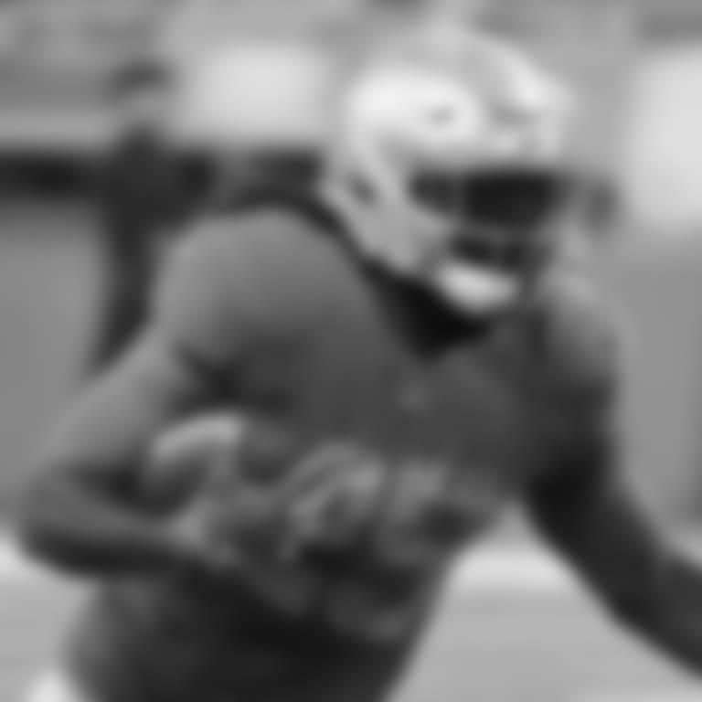 Detroit Lions running back LeGarrette Blount (29) during a NFL football game against the Chicago Bears on Thursday, Nov. 22, 2018 in Detroit. (Detroit Lions via AP).