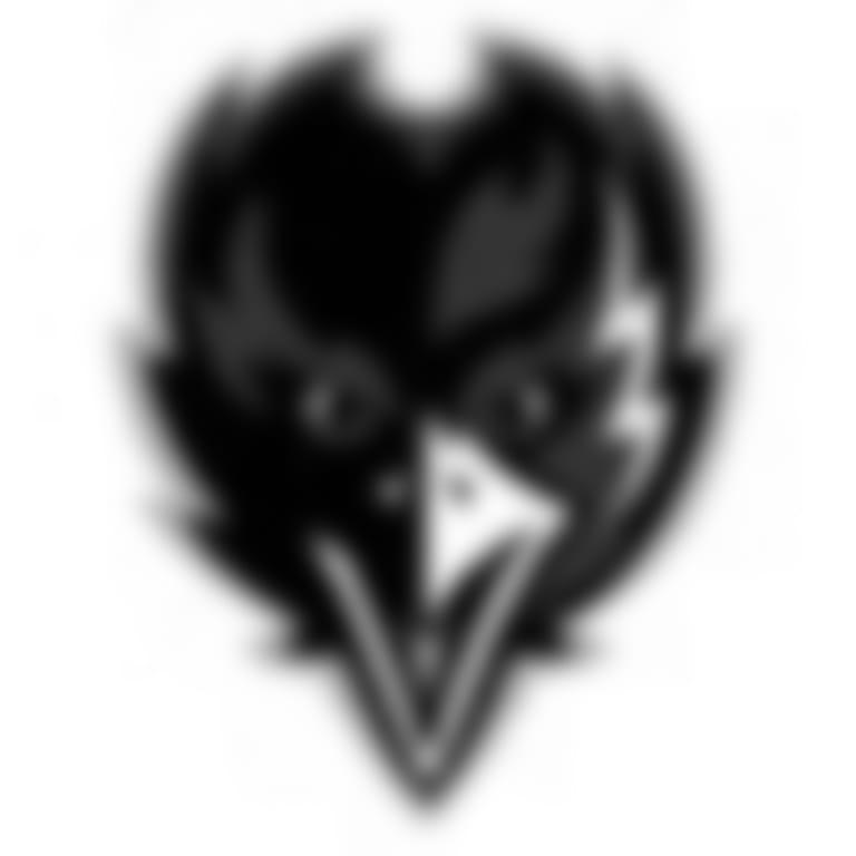 Headshot picture of Baltimore Ravens
