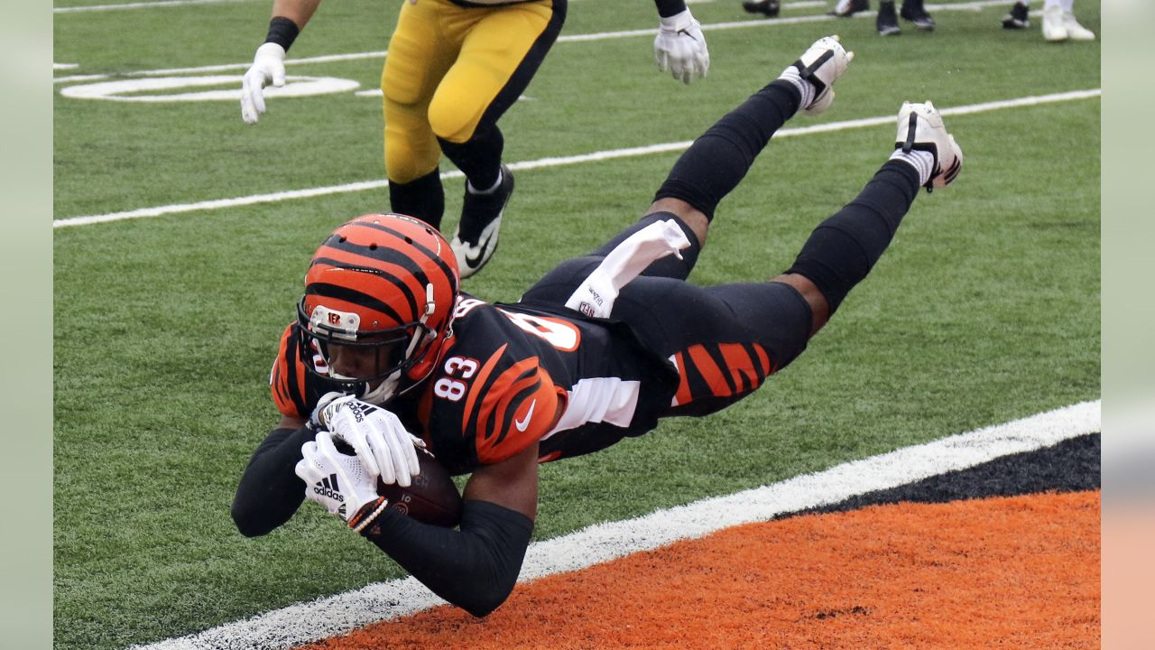 Tyler Boyd makes a leaping catch in the end zone for the Bengals' first touchdown against the Pittsburgh Steelers.