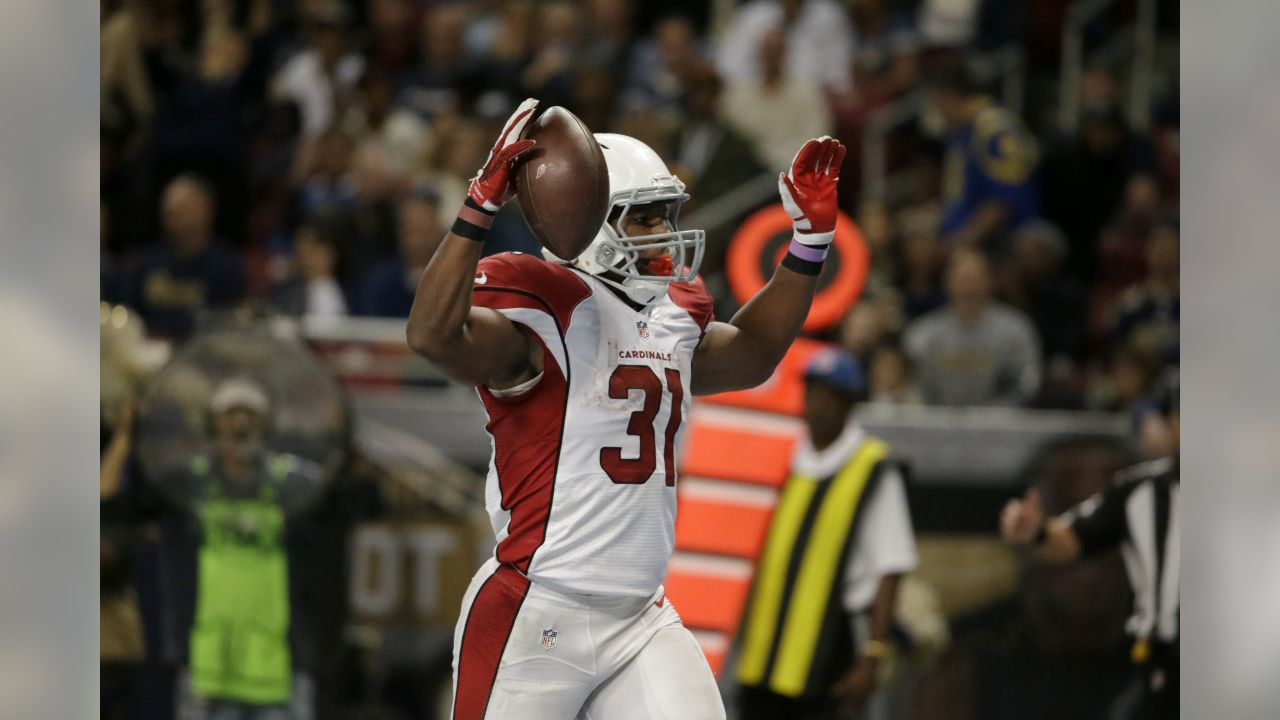 Arizona Cardinals running back David Johnson celebrates after catching a 10-yard  pass for a cb5f098cf