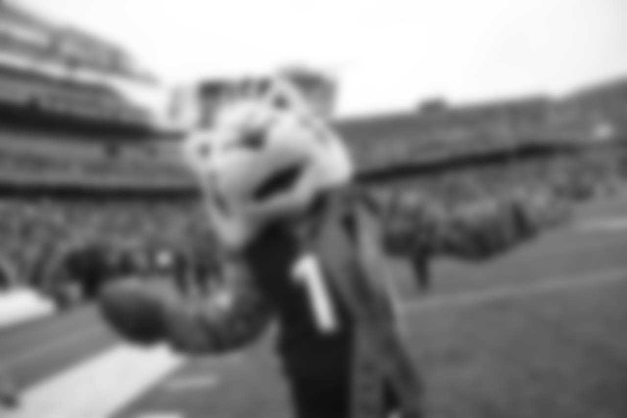Mascot Who Dey poses pregame before the Bengals host the Pittsburgh Steelers from Paul Brown Stadium.