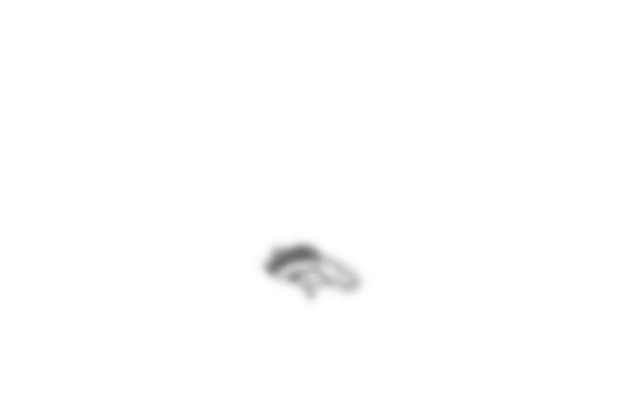 clear_bag_icon