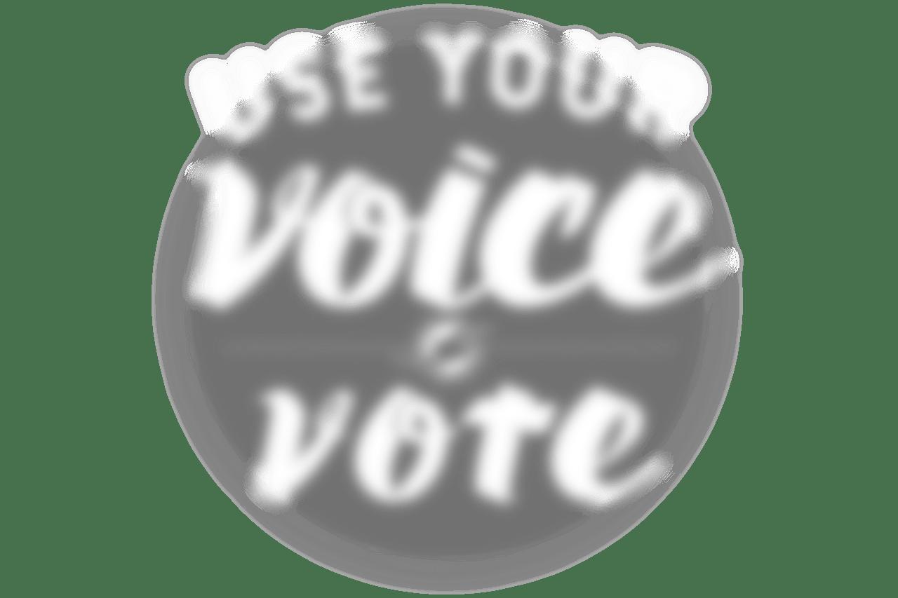 MAR531_2020 Voting Campaign_Elements_Vote