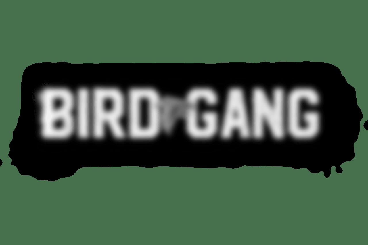 BIRDGANG_v3C copy