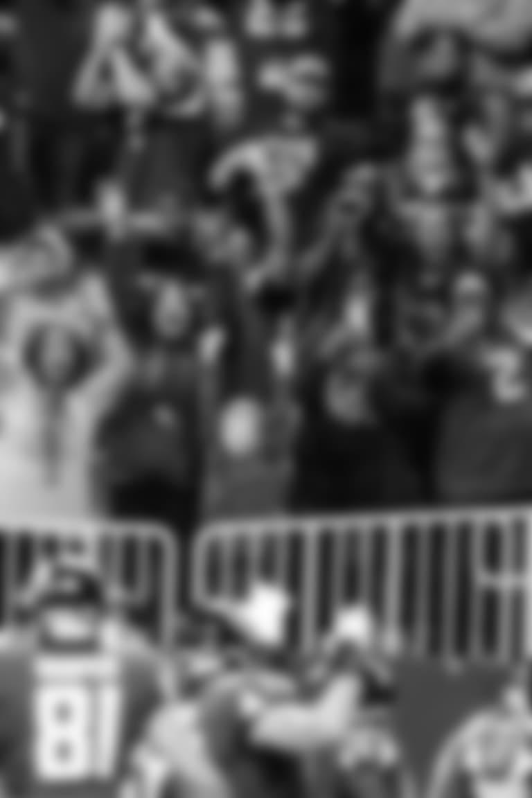 Fans celebrate a touchdown by Julio JonesAtlanta Falcons / Kara Durrette