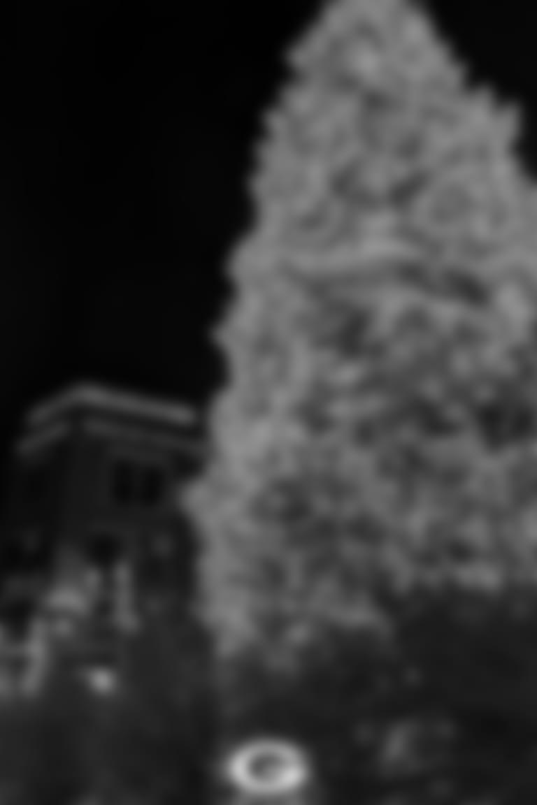 Holiday Lights - Tree