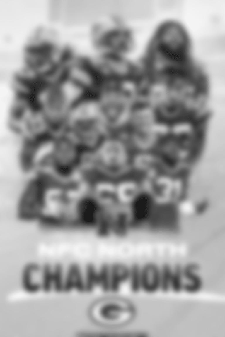 NFC North Champions